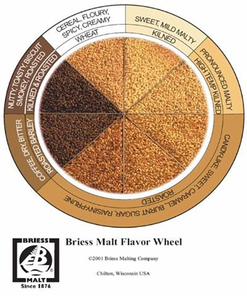 Malt Identifying Its Flavor And What It Means For Your